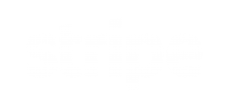 White Stripe Logo